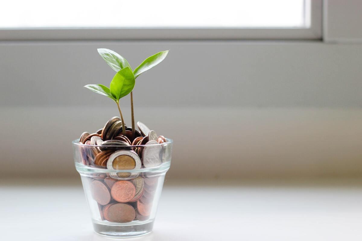 Donaciones en Madrid: cómo, cuánto y cuándo se paga